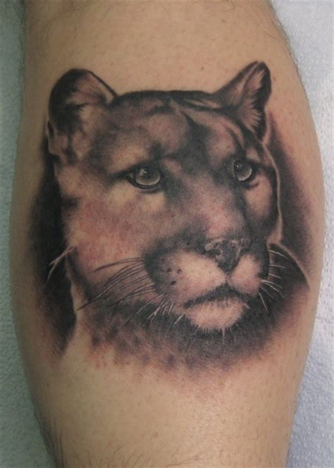 cougar mountain lion tattoo designs mountain tattoos images