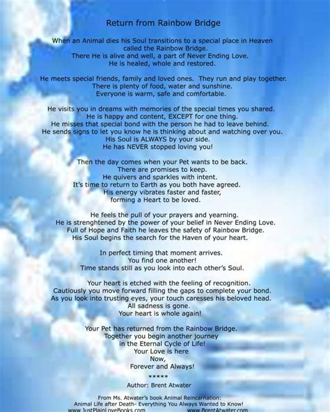 rainbow bridge poem for dogs original rainbow bridge poem the official original return from rainbow bridge poem
