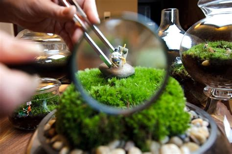 miniature gardening 2 0 a step by step guide on how to make your own miniature gardens books tiny world terrariums is a step by step guide to