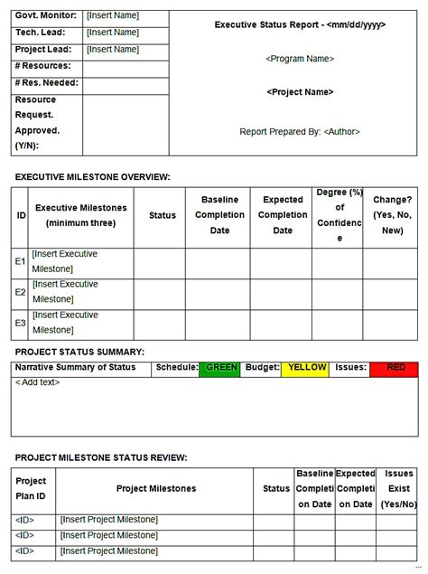 Weekly Status Report Template Word Executive Reporting Template Executive Summary Template