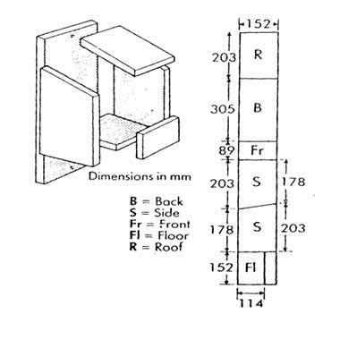 robin bird house plans awesome 25 unique robin nest box