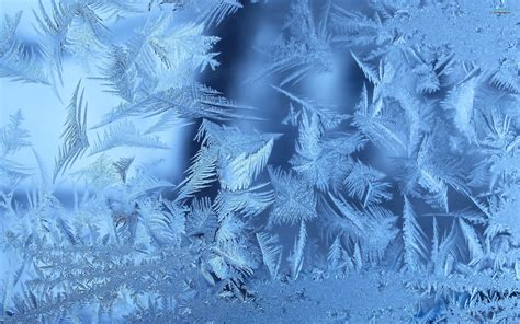 www wallpaper hd ice wallpaper wallpapersafari