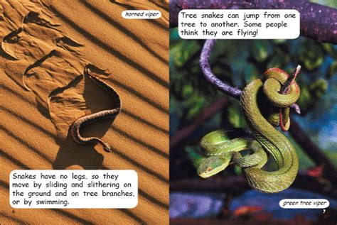slithering snake books slithering snakes