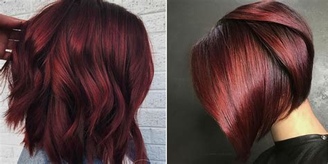 wine hair color mulled wine hair color is for winter