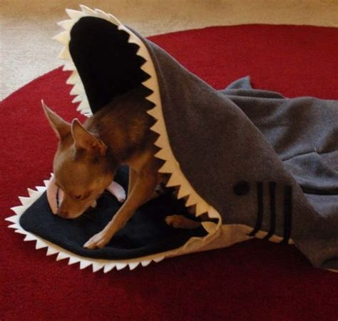 shark bed for dogs bed blankets the shark and sharks on pinterest