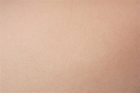 human skin stock image image of pattern texture integument 3359457 free textured skin images pictures and royalty free stock photos freeimages