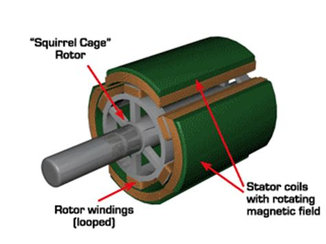 what is induction motor dc and ac machines