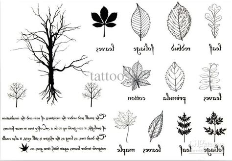 tattoo flash leaves collection of 25 leaf tattoo