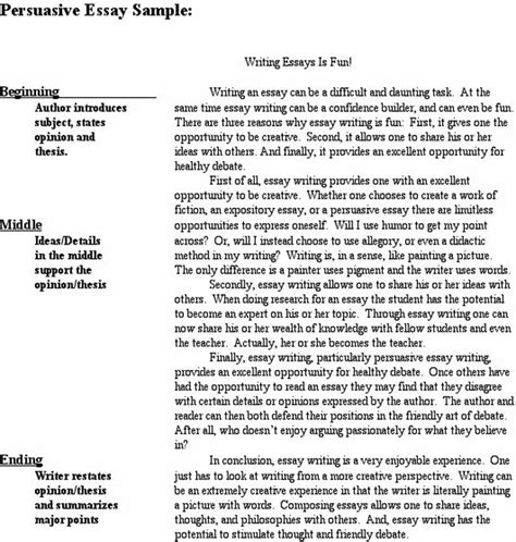 Exle Persuasive Essay by Persuasive Speech Writer Ssays For Sale