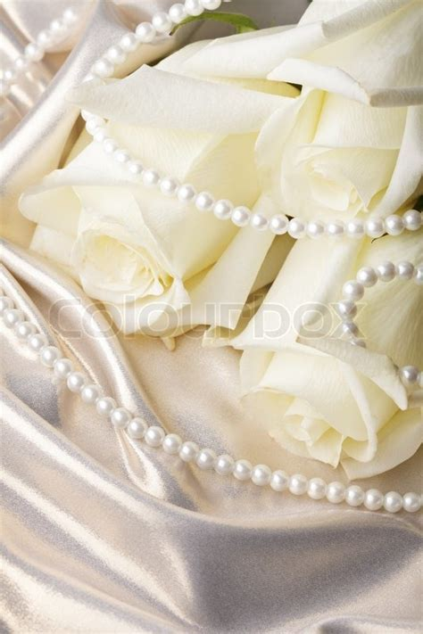 Pearl beads and cream rose on the silk background   Stock