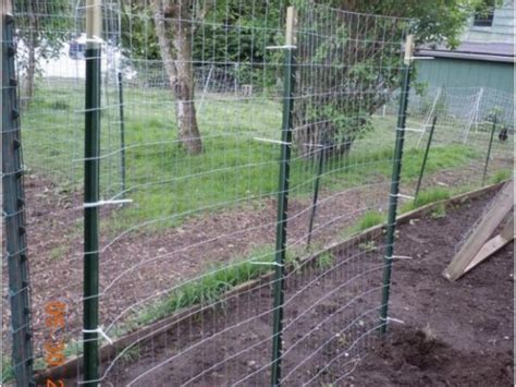 Vegetable Garden Maryland Crop Rotation For Vegetable Gardens Perry Md