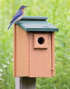 Hummingbird House Plans best eco bluebird house last forever