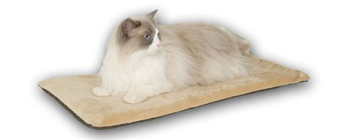 best cat beds best heated cat beds for sale my dog ate my money