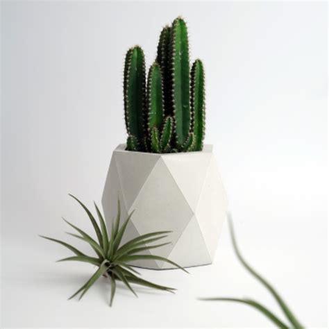 vasi da interno moderni vasi moderni da interno complementi duarredo