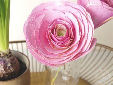 diy papierblumen ranunkeln handmade kultur