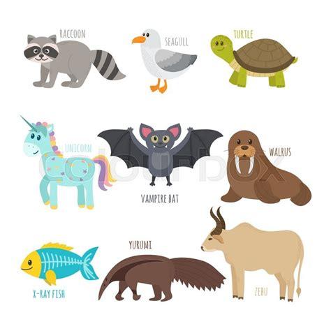 abc cute zoo alphabet  vector stock vector