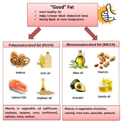 types of healthy fats understanding fats my tropicana slim