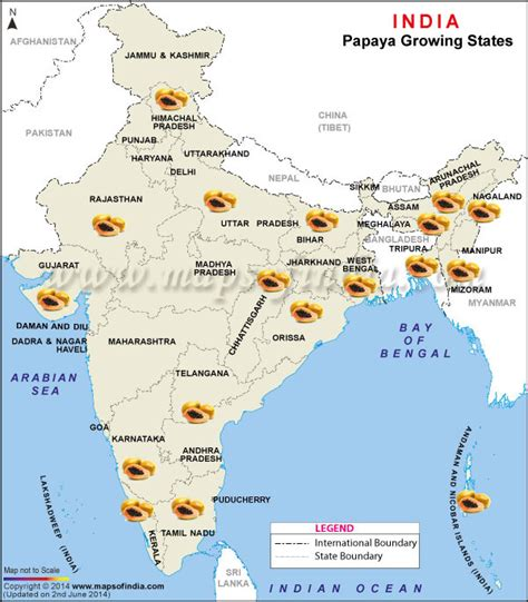 Map of Papaya Producing States in India, Papaya Producing States