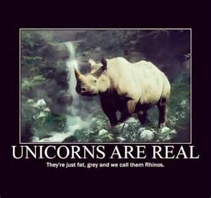 Unicorns are real they re just fat grey and we call them rhinos