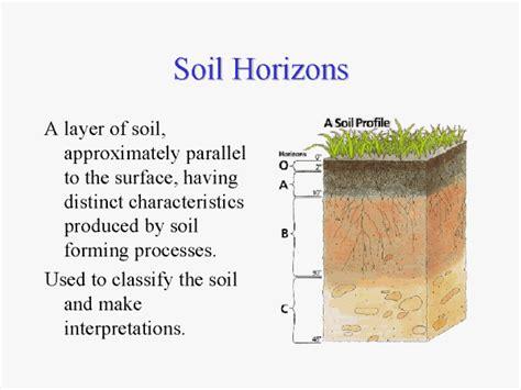 soil horizons diagram soil horizons diagram quotes