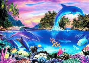 colorful dolphins dolphin panorama oceans nature background wallpapers