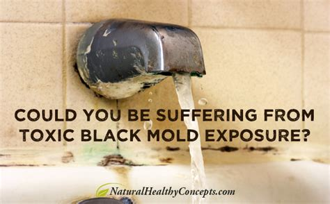 mold and the poison toxic black mold symptoms testing the hla drbq gene healthy concepts with a nutrition bias