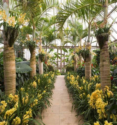 Chicago Botanic Garden Orchid Show Chicago Botanic Garden Show Focuses On Orchids