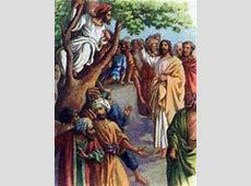 CatholicSaints.Info » Blog Archive » Saint Zacchaeus the ... Zacchaeus Bible Story