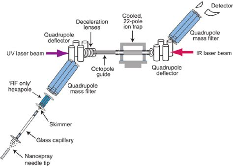 schematic diagram of a mass spectrometer colour schematic of tandem mass spectrometer with