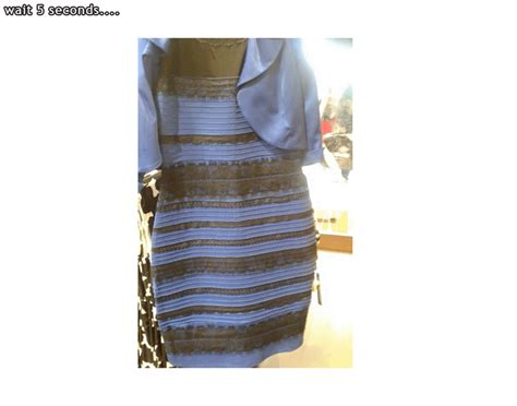 the dress is blue and black says the girl who saw it in what color is the dress why do some people see blue and