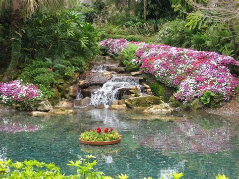 beautiful waterfalls with flowers waterfalls with beautiful flowers pictures to pin on pinterest pinsdaddy