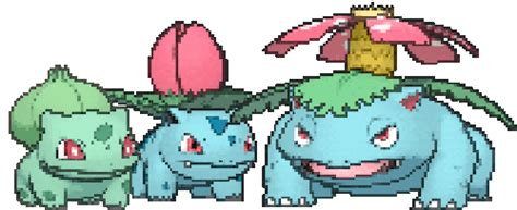 Kaos Go Bulbasaur Ivysaur Venusaur bulbasaur on