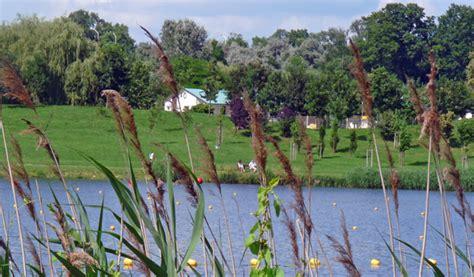 roeien poznan foto s des tages roeien op het malta meer sargasso