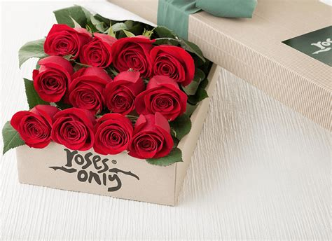 Box A Single Rainbow Multicolor Happy Preserved Flower roses gifts for flowers delivered uk