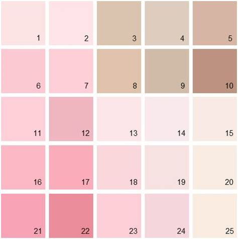 best 25 benjamin pink ideas on pink paint colors pink bathroom paint and