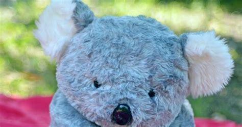Bonrka Koala gambar boneka koala lucu gambar boneka lucu