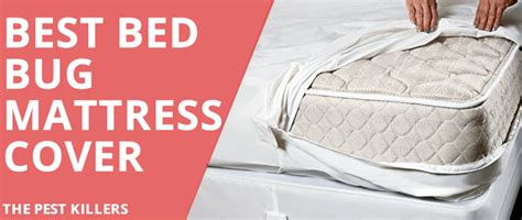orkin bed bug reviews mattress cover bed bugs reviews bedding sets