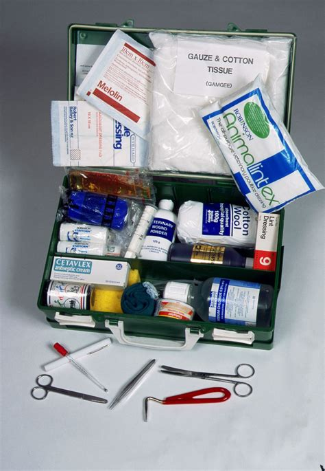aid kit medicine contents 10 essential items for a aid kit