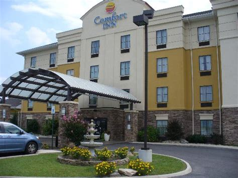 comfort inn athens tennessee front of comfort inn athens tn picture of comfort inn