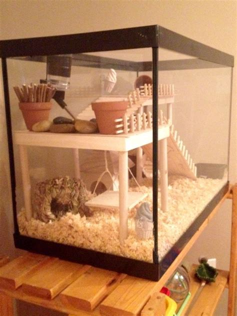 Handmade Cage - 1000 ideas about hamster toys on hamsters