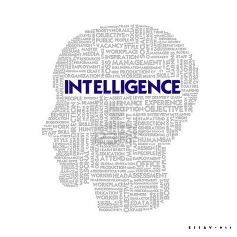 Intelligence Search Intelligence Images