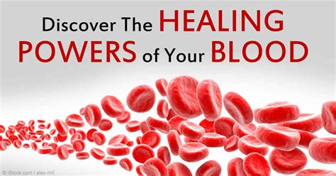 superwellness become your own best healer the revolutionary new formula for creating true vibrant health books blood may be beneficial to your health