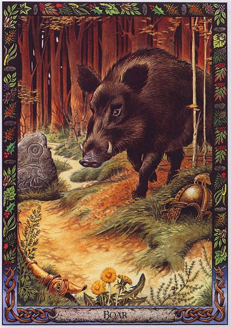 the druid animal oracle lrs the druid animal oracle painted by bill worthington boar image only