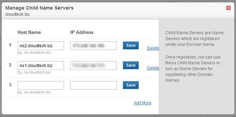 setting   custom domain nameservers  domain