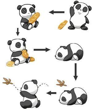 fairytail panda panda fanfictions de