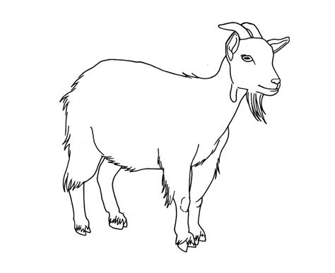Free Printable Goat Coloring Pages For Kids Coloring Page Goat