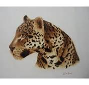Dibujos De Animales Leopardo Car Tuning