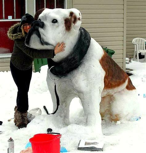 awesome dogs truly awesome snow sculptures of dogs