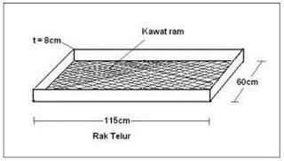 Termometer Mesin Tetas membuat penetasan telur mesin tetas sederhana kingdom dfc