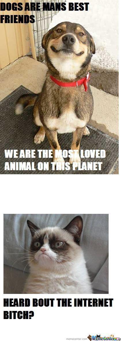 Cat And Dog Memes - dogs vs cats by mortdevol meme center